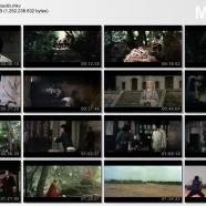 1976 shaolin.mkv_thumbs_[2017.05.20_15.15.14].jpg